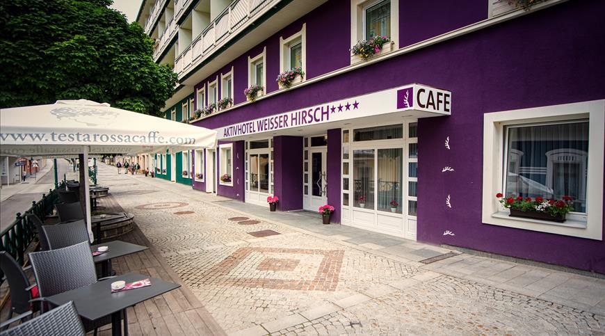 Hotel Aktiv Weisser Hirsch **** - Mariazell (ST) - Steiermark
