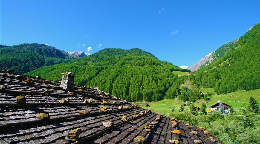 Hotel Natur Aktiv Rainhof *** - Senales (BZ) - Trentino Alto Adige