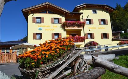 Hotel Aurora e Garnì Wellness Anderle ***