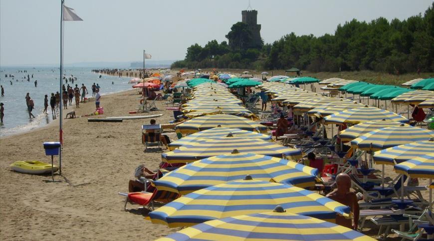 Cerrano Spiaggia