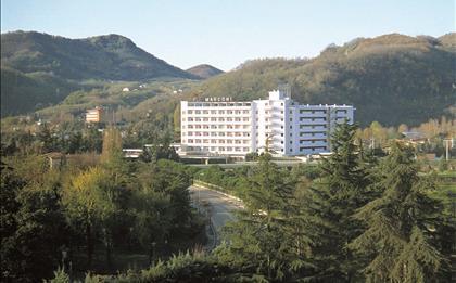 Hotel Terme Marconi ***