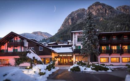 Hotel Regina delle Dolomiti ***